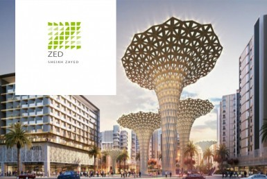 zed towers